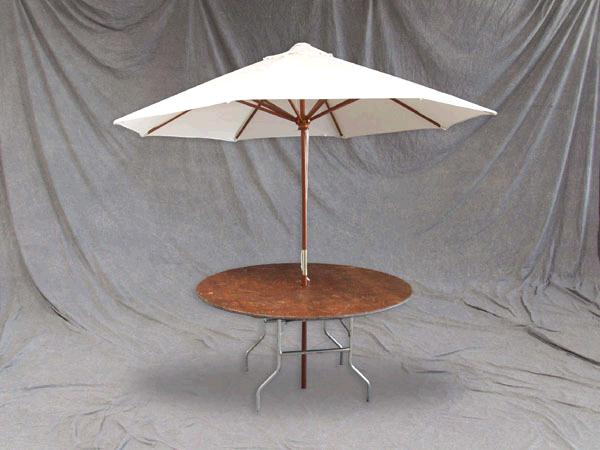 Where to rent TABLE UMBRELLA 48  W  UMBRELLA in Baltimore Maryland, Washington DC, Columbia MD, Westminster, Annapolis MD